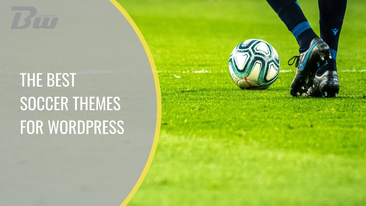 The best soccer themes for WP
