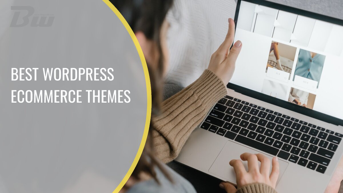 Best WP eCommerce themes